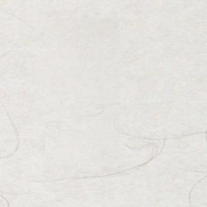 和紙イメージ